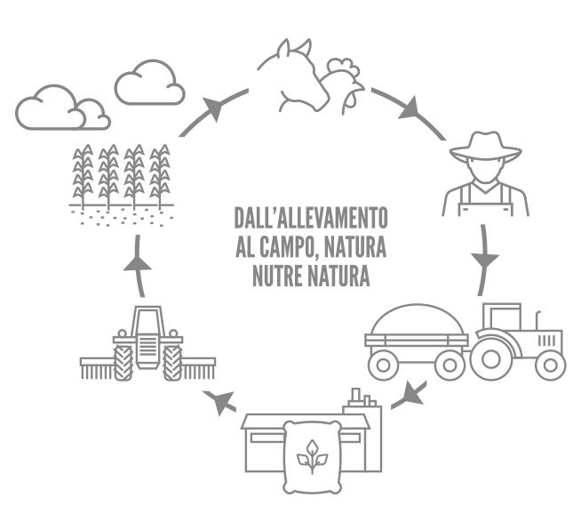 Agrofertil - Filiera